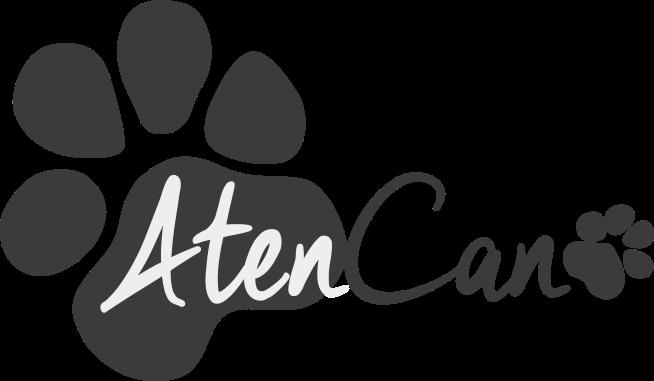 AtenCan educación canina
